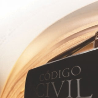 NOVO CÓDIGO CIVIL? DO PODER FAMILIAR